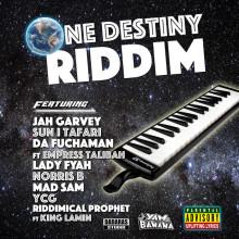 One Destiny Riddim